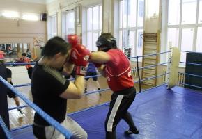 trenirovka-spb-boks
