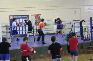 trenirovka-boks-spb (41)